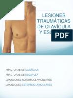 FX Clavicula y escápula.pptx