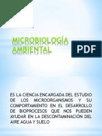 MICROBIOLOGÍA AMBIENTAL