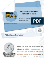 07-Herramienta-black-belt.pdf 4 0