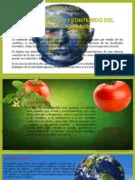 Derecho Agrario IV
