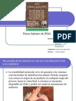 avance_presentacion.ppt