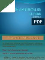 GA EN EL PERU.pptx