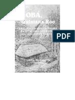 Apéndice 5. Estudio de Las Unidades Habitacionales Antes de La Excavación. Luis Barba y Alejandro Tovalín.