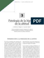 Patologi¦üa de la hipoxia de la altitud
