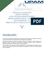 manual Mienbro Inferior