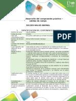 Guía Para El Desarrollo de Componente Práctico - Salidas de Campo