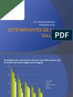 Determinantes Nap Anga 2014