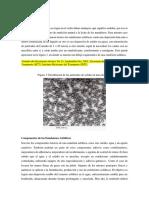 LAS EMULSIONES.docx