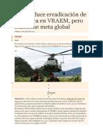 Perú Reduce Erradicación de Hoja Coca en VRAEM