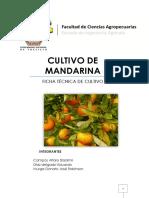 FICHA-TECNICA-CULTIVO-DE-MANDARINA-2.pdf
