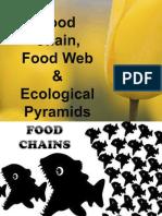 foodchainfood