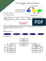 LAS ORGANIZACIONES COMO SISTEMAS Y PROCESOS ADMINISTRATIVOS Y EMPRESARIALES.docx