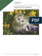 Pisica.pdf