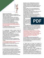 SIMULADO 1 GEOGRAFIA.pdf