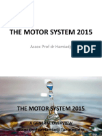 The Motor System 2015