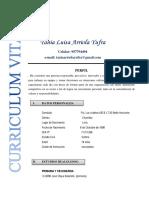 Modelo de Curriculum22