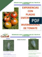 Platica_CEICOR.pdf