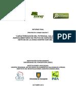 064 2011 Figueroa UdeC Informe Final