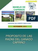 MANEJO CAPRINOS(Chuschi).ppt
