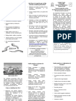 FOLLETO PREVENCION DEL CONSUMO DE SPA.docx