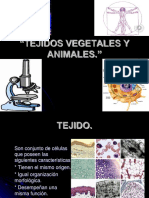 Biologia Correcto