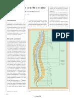 sindromesmedulares-130218194234-phpapp02.pdf