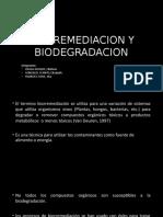 bioremmediacion