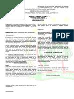 Informe Laboratorio 2 Ff Cascada.