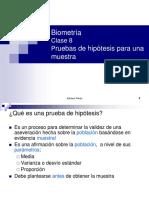 Prueba_Hipotesis-_PPT-2013.pdf