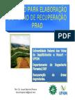 aula RAD 3 Roteiro para elaboração do PRAD.pdf