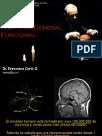 Clase Anatomia Funcional Basica