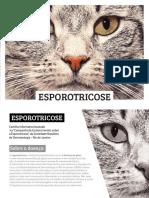 Esporotricose