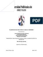 ELABORACION DE VINO DE MIEL DE ABEJA O HIDROMIEL.docx