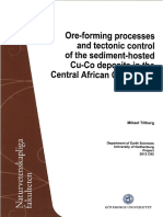 Ore-Forming Processes and Tectonic-control of the Sdiment-hosted Cu-co Deposits in the Central Afican Copperbelt