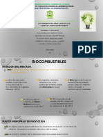 EXPOSICIÓN DE AGRONEGOCIOS BIOCOMBUSTIBLE.pptx