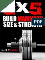 5x5-Strongman.pdf