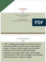 253653988-Gerd