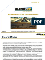 Amarillo Gold Corporation