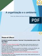 Organizações e Ambiente