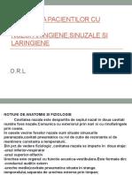 Ingrijirea Pacientilor Cu Infectii Nozofaringiene,Sinuzale Si Laringiene