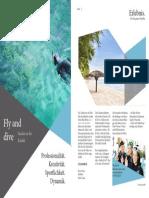 BroschüreDesiggn FlynDive.pdf