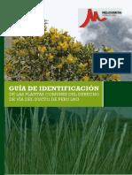 Guia Identificacion Plantas