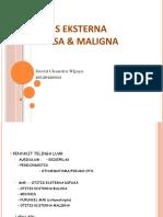 Otitis Eksterna Difusa & Maligna