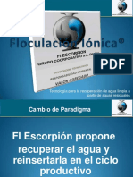 9-Floculación Iónica-Parte2.pdf