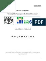 Relatorio Panorama i - Mocambique
