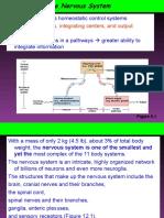Nervous system bsc 20161.pdf