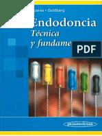Endodoncia. Técnica y fundamentos - Soares, Goldberg.pdf
