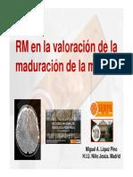 02-rm_en_la_valoración_de_la_maduración_de_la_mielina.pdf