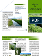 Solutions for Goatsrue and Utah Invasive Weeds