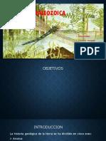 periodo Paleozoico PPT